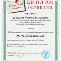 Участие в III Международном конкурсе профессионального мастерства «Методическая копилка»